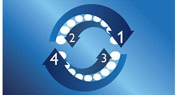 Zegar okresowy Quadpacer zachęca do dokładnego mycia każdej części jamy ustnej